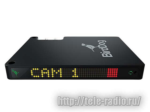 BirdDog Studio NDI - конвретрер SDI/HDMI синалов в IP протокол NDI