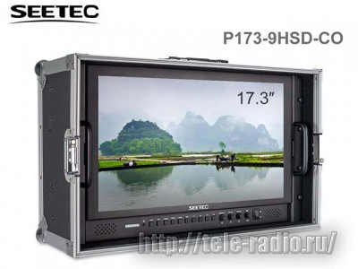 Seetec P173-9HSD-CO