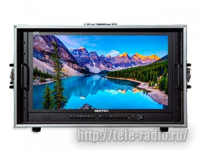 Seetec 4K238-9HSD-CO